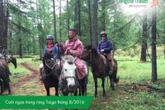 cuoi-ngua-trong-rung-taiga-thang-8-2016