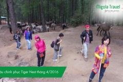 bat-dau-chinh-phuc-tiger-nest-thang-4-2016