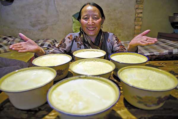 lễ hội sữa chua Shoton