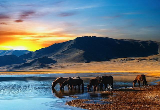 Mông Cổ