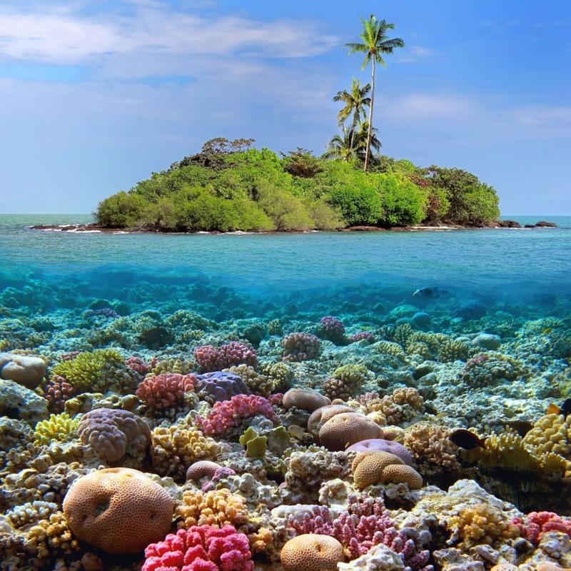 Đảo Sak Thái Lan Vịnh Pattaya