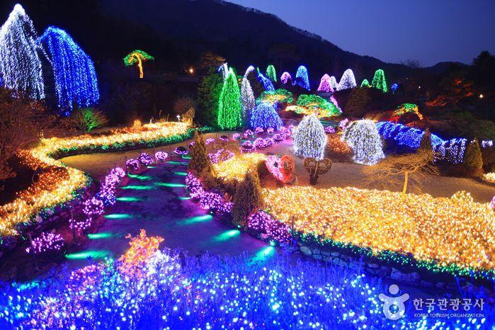lễ hội ánh sáng tại Seoul
