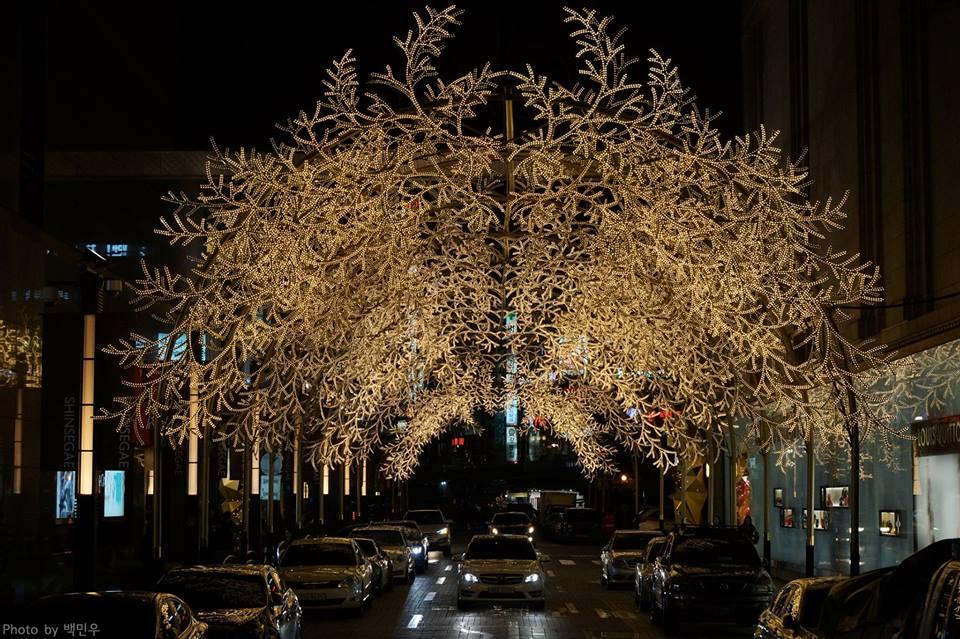 Lễ hội ánh sáng tại Hàn Quốc. Ảnh 3