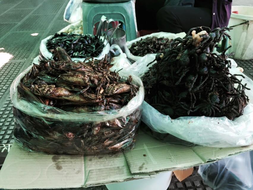 Trước khi lên thuyền, du khách có thể ghé mua hải sản tươi sống ở các chợ địa phương để mang sang đảo thưởng thức.