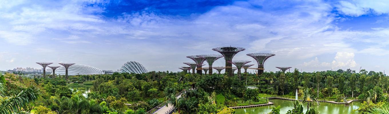 Trải rộng 101 hecta, khu vườn cây  xanh Gardens by the Bay hiện đại là nơi chứa hơn 250 nghìn loài cây  quý hiểm. Nơi đây cũng được biết đến với vườn hoa nhân tạo lớn nhất Đông Nam Á.