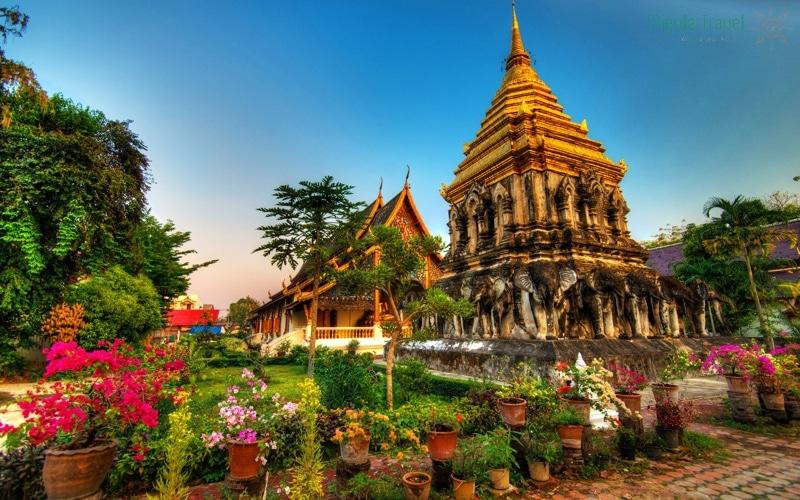 den-co-tai-chiang-mai