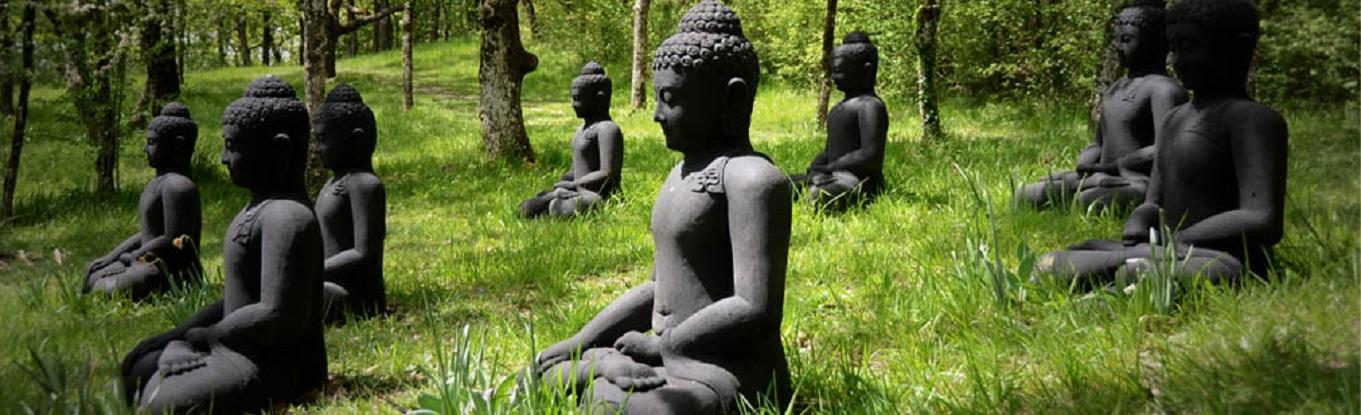 Những bức tượng Phật ngồi trong khuôn viên Làng Mai