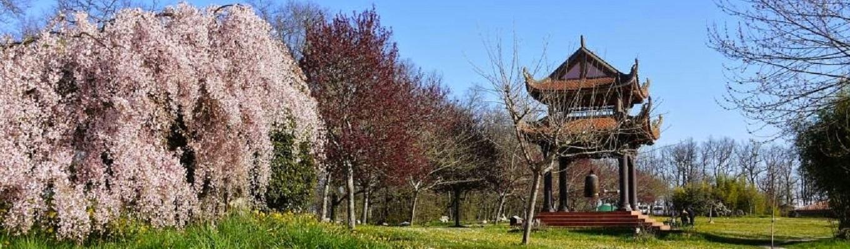 Làng Mai, nguyên tên là Đạo tràng Mai thôn là một cộng đồng tập thiền thuộc Giáo hội Phật giáo Thống nhất (tiếng Pháp: Eglise Boudhique Unifieé)[1] ở Tây Nam nước Pháp, cách thủ đô Paris 600 km