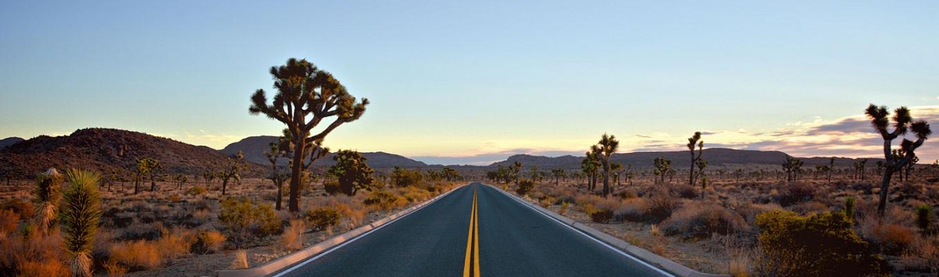 Hoang mạc Mojave, người địa phương thường gọi là High Desert (có nghĩa là Hoang mạc trên cao), chiếm một phần lớn vùng đông nam California và những phần nhỏ hơn của trung California, nam Nevada, và tây bắc Arizona ở Hoa Kỳ