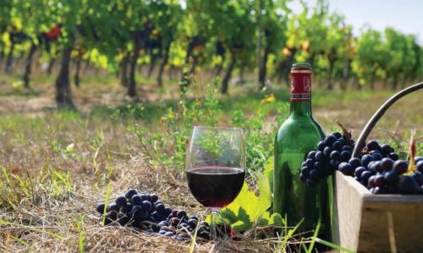 Thương hiệu rượu nổi tiếng vùng này không thể không kể đến Fairview shiraz