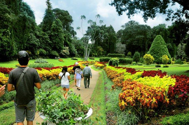 Vườn thực vật Peradeniya