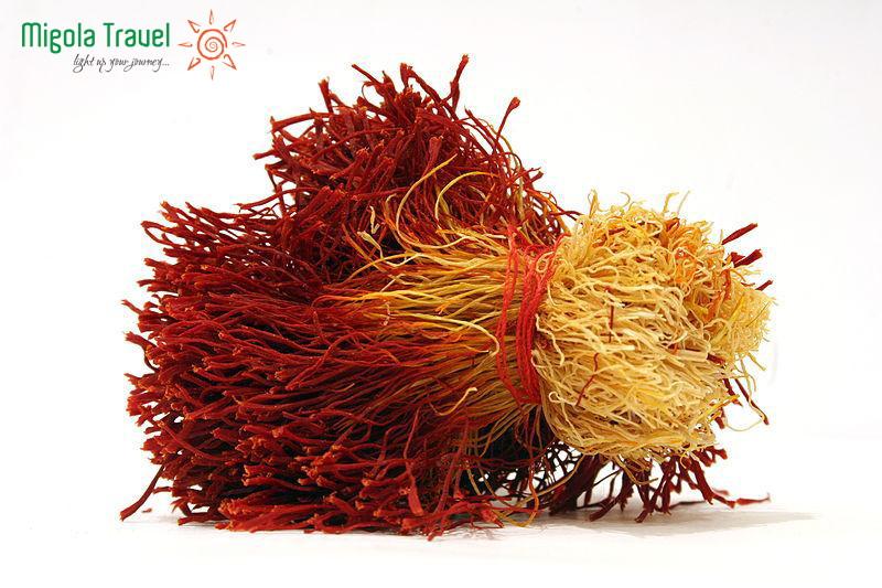 saffron-india-migolatravel