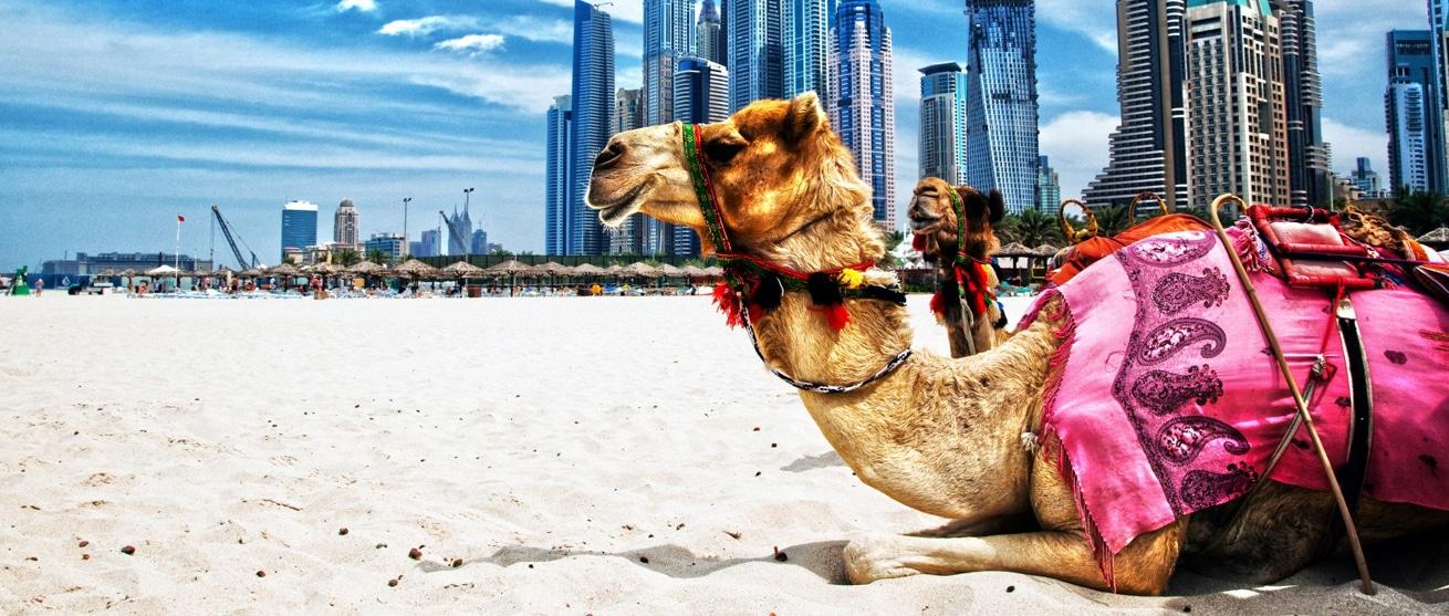 Du lịch Trung Đông
