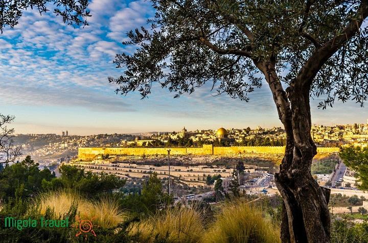 nui-oilive-tham-quan-jerusalem
