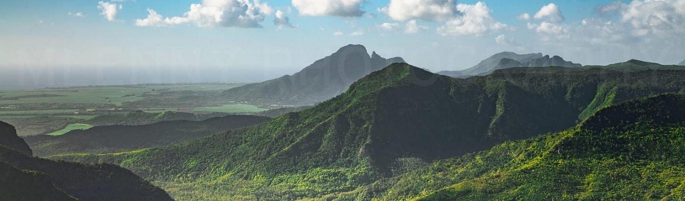 Vườn Quốc Gia Black River Gorges  là nhà của hơn 300 loài thực vật có hoa và nếu bạn may mắn bạn có thể nhìn thấy chim bồ câu màu hồng nổi tiếng, một loài chim đặc hữu của Mauritius mà gần như bị tuyệt chủng