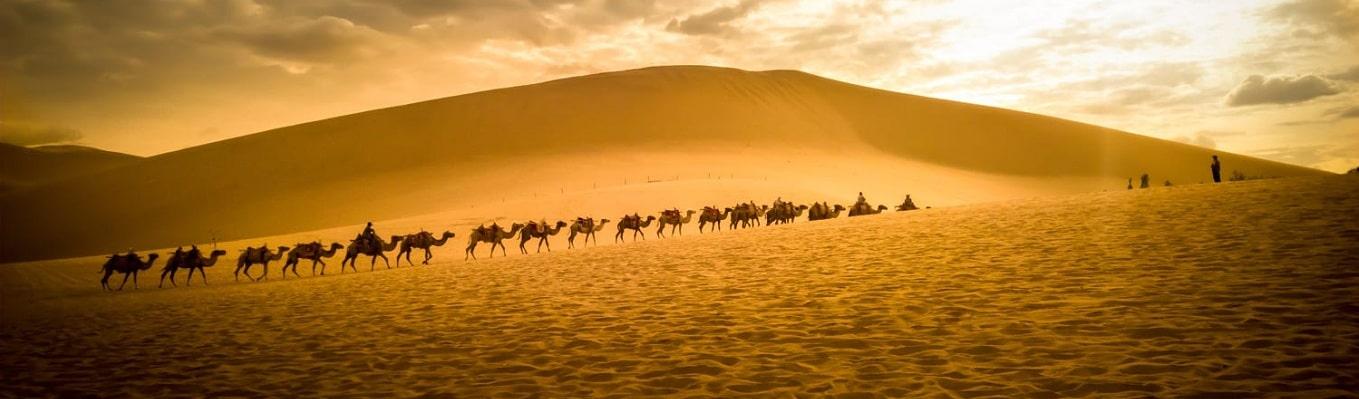 Đồi Cát Hát, là một phần của sa mạc rộng lớn, nơi quý khách sẽ chiêm ngưỡng những chú lạc đà chậm rãi tiến lên trong gió cát và nghe được những âm thanh lạ kỳ của cát.