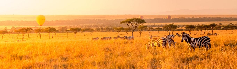 Khu bảo tồn quốc gia Masai Mara nằm ở Narok - Kenya, Tanzania. Khu bảo tồn này nổi tiếng trên toàn thế  giới nhờ số lượng lớn các loài sư tử Masai (hay còn gọi là sư tử Đông Phi), báo hoa Châu Phi và báo săn Tanzania..