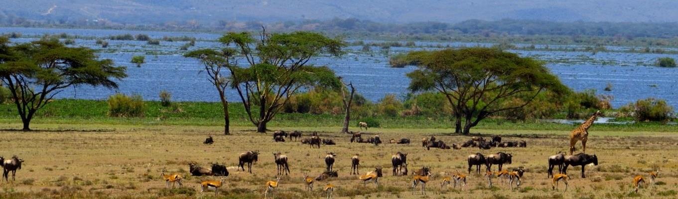 Vườn quốc gia Aberdare, một phần của dãy núi Aberdare - dãy núi cao thứ 3 ở Kenya với độ cao gần 4.000m, theo tiếng của người Kikuyu ngọn núi này được ví như một trong những ngôi nhà của Chúa.