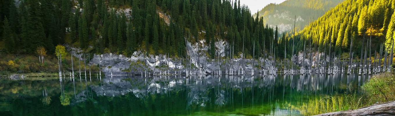 Hồ Kaindy mang một nét đẹp nổi tiếng và kỳ lạ, điểm nhấn của hồ là có một khu rừng cây linh sam chìm cùng các thân cây hùng vĩ mọc ngay dưới đáy hồ và vươn tua tủa lên mặt nước