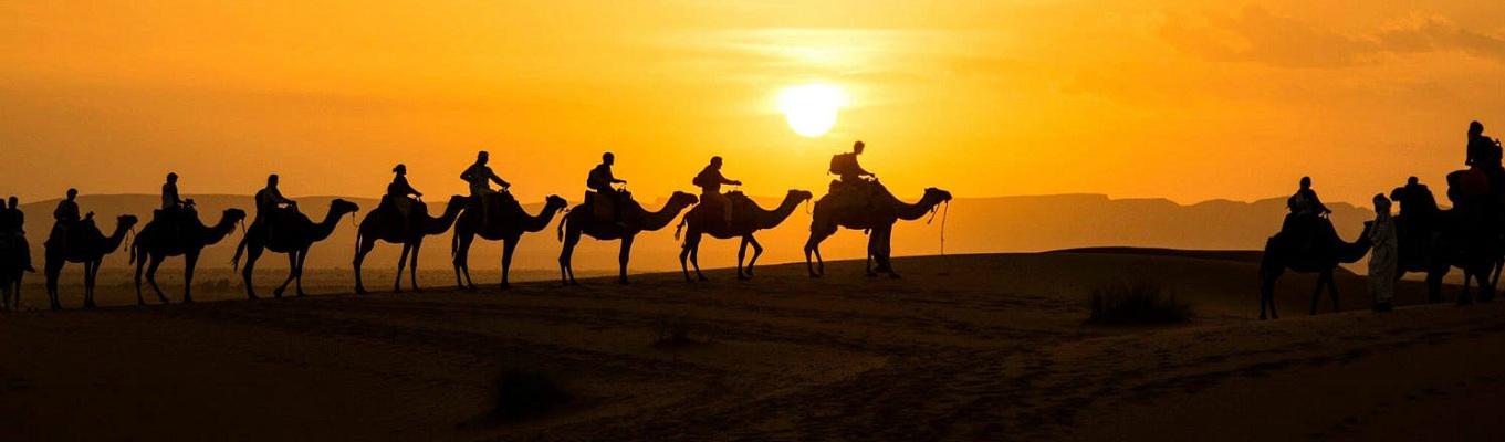 """Quý khách trải nghiệm """"cưỡi lạc đà và ngắm cảnh hoàng hôn kỳ ảo"""" trên sa mạc nóng lớn nhất hành tinh  – với diện tích bề mặt là 9,4 triệu km2, chiếm 1/4 châu Phi, Sahara không chỉ là nơi khắc nghiệt, hoang vu, mà còn ẩn chứa nhiều bí mật thú vị!"""