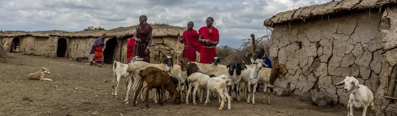 Khu làng của người Masai bản địa, du khách sẽ có thời gian tìm hiểu về các tập quán sinh sống, săn bắn, chiến đấu, có cơ hội chụp ảnh cùng các thiếu nữ & các chiến binh dũng mãnh người Masai…