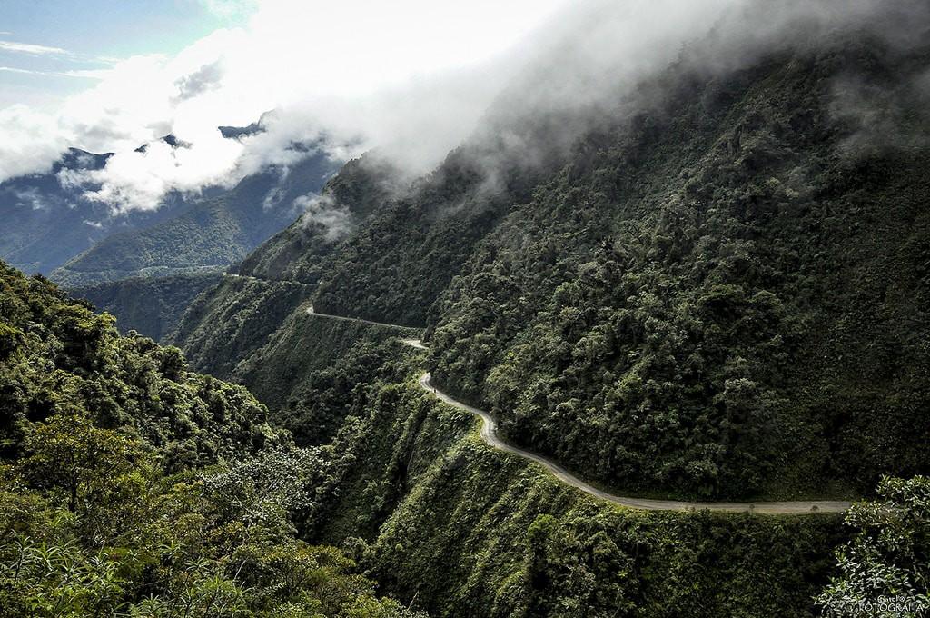goc-rong-dead-road