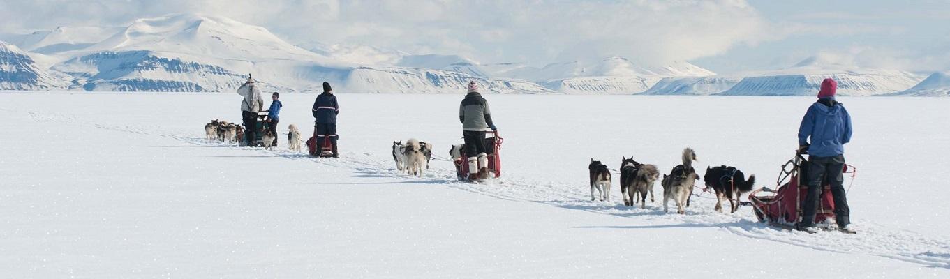 Du lịch Vùng Cực