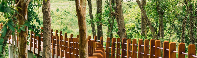 Sự đa dạng sinh học của rừng Cát Tiên do có vị trí địa lí đặc thù, nằm ở cuối dãy Trường Sơn, khu vực chuyển tiếp giữa cao nguyên Tây Nguyên và bình nguyên Đông Nam Bộ. Khoảng 50% diện tích là rừng xanh, 40% là rừng tre.