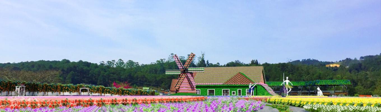 Fresh Garden nổi lên như một địa điểm dành cho du khách muốn có những bức ảnh đẹp khi đến Đà Lạt. Được Mẹ Thiên Nhiên ưu ái bạn tặng cho khí hậu ôn hòa và mát mẻ, tạo điều kiện cho các loài hoa phát triển và đua nhau khoe sắc.