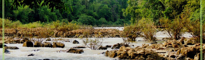 Thác Bến Cự không rộng, mùa khô, nước cạn để lộ những dãy đá liên hoàn nối nhau. Hai bên cây cối xanh tươi.
