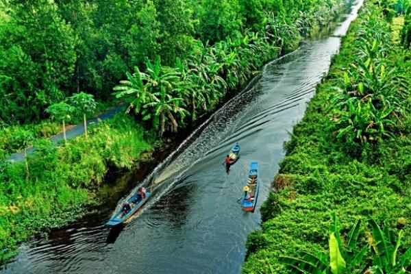 Ngắm động - thực vật khi tham quan rừng U Minh Hạ.