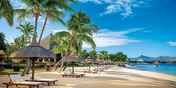 Biển Mauritius với những rặng dừa xanh.