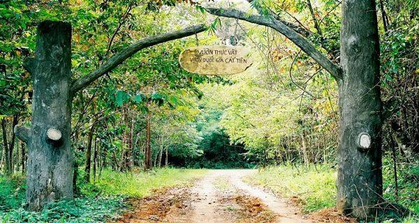 Vẻ đẹp tinh khiết và hoang dã của Vườn Quốc Gia Cát Tiên.