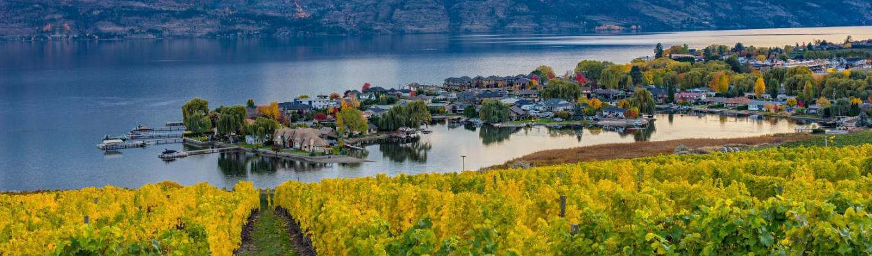 Thung lũng Okanagan – vùng sa mạc rộng lớn ở bờ tây Canada với các vườn nho, vườn trái cây và rượu vang nổi tiếng của Canada.