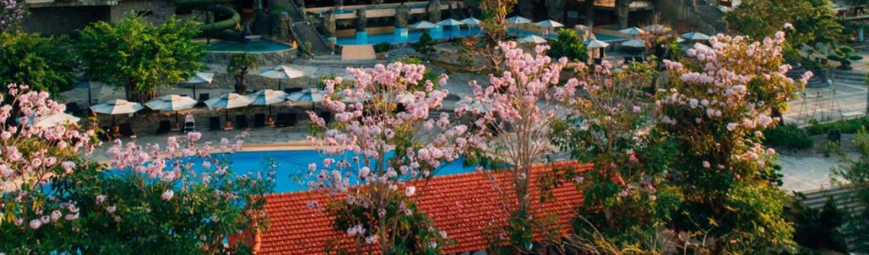 DoiDep Tea Resort & Spa – được thiết kế đồng điệu với thiên nhiên nằm giữa những đồi chè, cà phê xanh ngát, đoàn làm thủ tục nhận phòng.