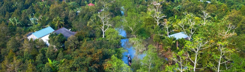 Cù lao Tân Phong - nơi nổi tiếng với khí hậu mát mẻ trong lành và những vườn cây ăn trái trĩu quả.
