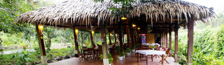 Với lối kiến trúc hòa hợp với thiên nhiên, tại Mekong Ecolodge resort quý khách có thể hoàn toàn tận hưởng và thư giãn sau những ngày làm việc mệt mỏi.